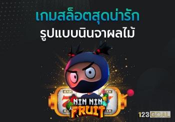 Nin Nin Fruit